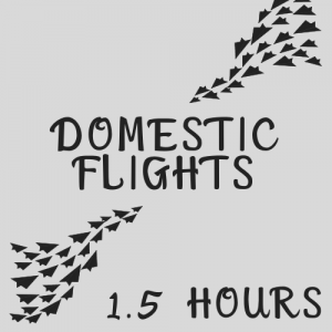 Arrive at the airport at least 1.5 hours before a Domestic flight
